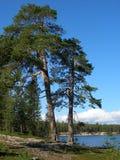 Kolvitskoe lake Royalty Free Stock Images