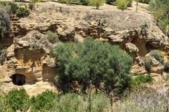 The Kolymbetra Garden at the Valle dei Templi - Agrigento, Sicily, Southern Italy. The Kolymbetra Garden at the Valle dei Templi - Agrigento, Sicily, in Southern royalty free stock photos