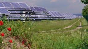 Komórka panel słoneczny zielona energia, kwiaty i trawa blisko drogi, zdjęcie wideo