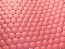komórki. ilustracja wektor
