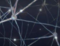 komórki mózgowe Fotografia Royalty Free