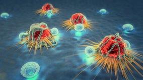 Komórki nowotworowe i limfocyty Zdjęcia Royalty Free
