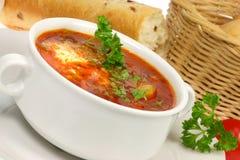 Kom borscht. royalty-vrije stock fotografie