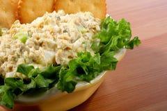 Kom de salade van tonijnvissen stock foto's