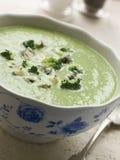 Kom de Soep van Broccoli en van het Stilton royalty-vrije stock afbeelding