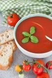 Kom eigengemaakte tomatensoep Royalty-vrije Stock Afbeelding