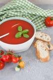 Kom eigengemaakte tomatensoep Royalty-vrije Stock Fotografie