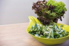 Kom gemengde salade Stock Fotografie