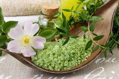 Kom groene overzees zout stock foto