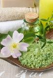 Kom groene overzees zout royalty-vrije stock foto