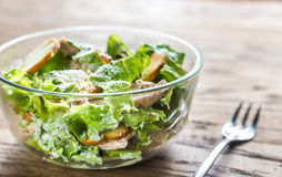 Kom kippen caesar salade Royalty-vrije Stock Foto