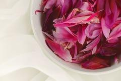 Kom met roze pioenbloemblaadjes op wit Tulle Stock Foto's