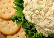 Kom tonijnsalade Stock Afbeelding