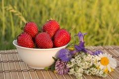 Kom van Aardbeien Stock Afbeeldingen
