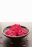 Kom van bloemhoofden op lei stock afbeelding