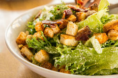Kom van Caesar Salad, close-up Stock Afbeelding