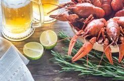 Kom van gekookte rivierkreeften met twee mokken bier Royalty-vrije Stock Afbeelding