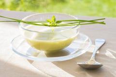 Kom van groene Gaspacho met basilicum en bieslook Stock Afbeelding