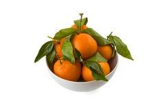 Kom van verse mandarijnen Stock Foto