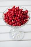 Kom van wilde aardbeien Stock Foto