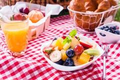 Kom verse tropische fruitsalade bij een picknick Stock Afbeelding