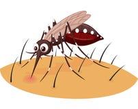 Komar kreskówka ssa krew od ludzkiej skóry royalty ilustracja