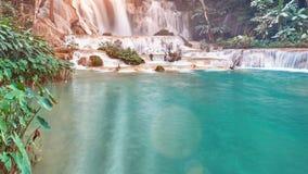 Komarnica nad fantazja strumienia czasu tajemniczym lasowym upływem zdjęcie wideo