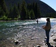 Komarnica połów Gallatin rzeka w Montana zdjęcie stock