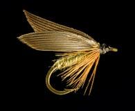 komarnica TARGET181_1_ pstrąg Obrazy Stock