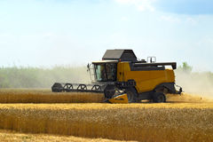 Kombain collects on the wheat crop. Agricultural machinery in the field. royalty free stock photography