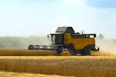 Kombain si raccoglie sul raccolto del grano Macchinario agricolo nel campo Fotografia Stock Libera da Diritti