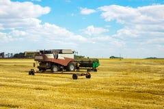 Kombain si raccoglie sul raccolto del grano Macchinario agricolo nel campo Raccolto di grano Immagine Stock Libera da Diritti