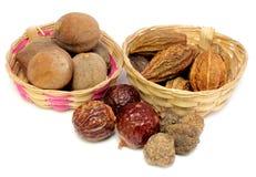 Kombinacje ziołowe lecznicze owoc zdjęcie stock