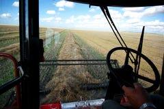 Kombination eines Korn-Feldes stockbilder