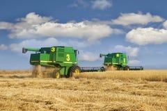 Kombinieren Sie auf Weizenfeld Stockfotos