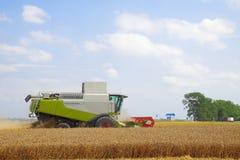 Kombinieren Sie für das Ernten des Weizens Stockbilder