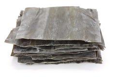 Kombu di Dashi, kelp secco, ingre giapponese delle azione di minestra fotografia stock libera da diritti