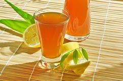 Kombucha - Healthy Nutrition stock photography