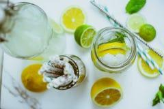 Kombucha med limefrukt och citronen i flaskan royaltyfri foto