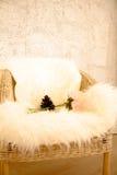 Komfort för skinnbulahem royaltyfria foton