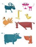 Komiczny zwierzęta gospodarskie Zdjęcia Royalty Free