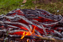 kominka płonący węglowy drewno Zbliżenie gorący płonący drewno, obrazy stock