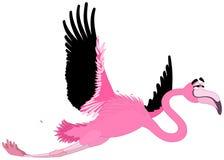 Komisk flamingo Arkivbild