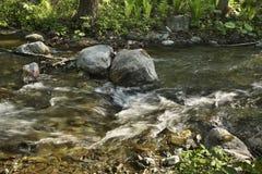 Komissarovkarivier dichtbij Vestochka Rusland Stock Foto