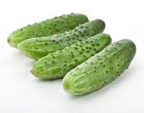 Komkommer Royalty-vrije Stock Afbeeldingen