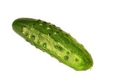 Komkommer - die op wit wordt geïsoleerd Stock Foto's
