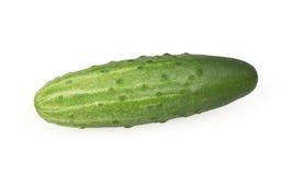Komkommer die op wit wordt geïsoleerdo Stock Afbeelding