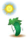 Komkommer en de zon royalty-vrije illustratie
