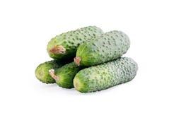Komkommer op een witte achtergrond Royalty-vrije Stock Fotografie