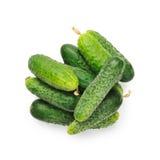 Komkommer op witte achtergrond Stock Foto's
